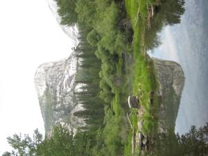 Historical Romance Novels Yosemite, Historical Books Yosemite CA